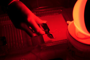 Dark room equipped under photo laboratory. Trays with reagents for printing by hand. Darkroom printing process photographer using enlarger to produce photographic prints. Working in a red dark room.